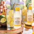 Double Dutch Double Lemon
